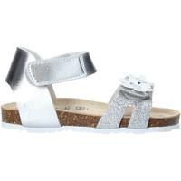 Schoenen Meisjes Sandalen / Open schoenen Grunland SB1545 Zilver