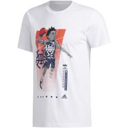 Textiel Heren T-shirts korte mouwen adidas Originals FM4760 Wit