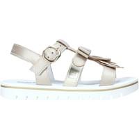 Schoenen Meisjes Sandalen / Open schoenen NeroGiardini E031617F Anderen