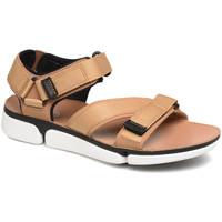 Schoenen Heren Sandalen / Open schoenen Clarks 26141049 Bruin