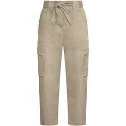 Textiel Dames Cargobroek Pepe jeans PL211389 Bruin