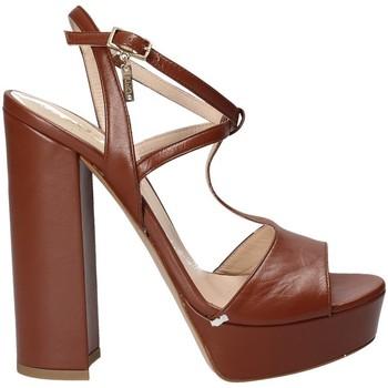 Schoenen Dames Sandalen / Open schoenen Liu Jo S17023P0062 Bruin