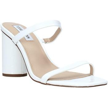 Schoenen Dames Sandalen / Open schoenen Steve Madden SMSKATO-WHTC Wit