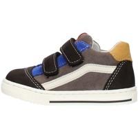 Schoenen Jongens Lage sneakers Balocchi 602211 Multicolored