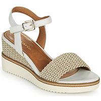 Schoenen Dames Sandalen / Open schoenen Tamaris ALIS Wit / Beige