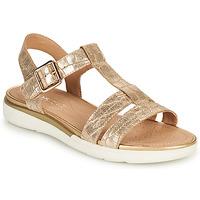 Schoenen Dames Sandalen / Open schoenen Geox D SANDAL HIVER B Goud