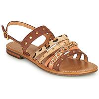 Schoenen Dames Sandalen / Open schoenen Geox D SOZY S I Bruin / Beige