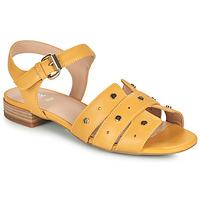 Schoenen Dames Sandalen / Open schoenen Geox D WISTREY SANDALO C Geel