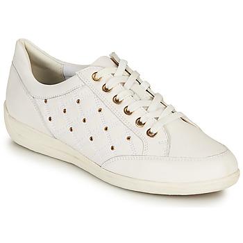 Schoenen Dames Lage sneakers Geox D MYRIA H Wit / Goud