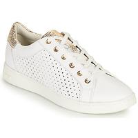 Schoenen Dames Lage sneakers Geox D JAYSEN B Wit / Goud