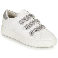 Schoenen Dames Lage sneakers Geox D PONTOISE C Wit / Zilver
