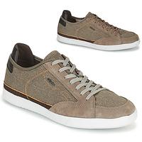 Schoenen Heren Lage sneakers Geox U WALEE A Taupe