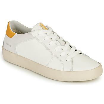 Schoenen Heren Lage sneakers Geox U WARLEY A Wit