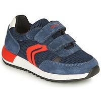 Schoenen Jongens Lage sneakers Geox ALBEN BOY Marine / Rood
