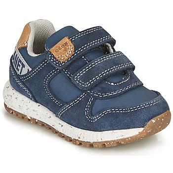Schoenen Jongens Lage sneakers Geox ALBEN BOY Blauw / Bruin