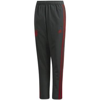 Textiel Jongens Trainingsbroeken adidas Originals  Grijs