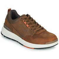 Schoenen Heren Lage sneakers Skechers FAIRLINE Bruin