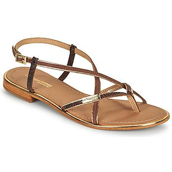 Schoenen Dames Sandalen / Open schoenen Les Tropéziennes par M Belarbi MONAGOLD Bruin