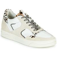 Schoenen Dames Lage sneakers Mam'Zelle ARTIX Wit / Luipaard