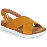 Schoenen Dames Sandalen / Open schoenen Clarks ELAYNE CROSS Mosterd