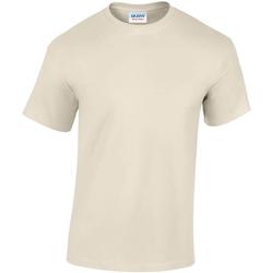 Textiel Heren T-shirts korte mouwen Gildan GD05 Zand