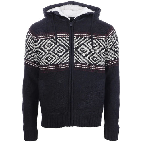 Textiel Heren Vesten / Cardigans Teddy Smith  Blauw