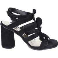 Schoenen Dames Sandalen / Open schoenen Sergio Cimadamore Sandali Camoscio Nero