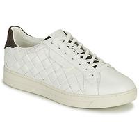 Schoenen Dames Lage sneakers MICHAEL Michael Kors KEATING LACE UP Wit / Bruin