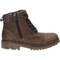 Schoenen Kinderen Laarzen Geox J643DA 04554 Bruin