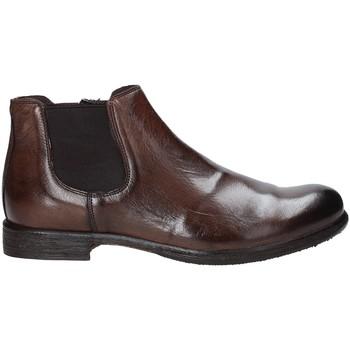Schoenen Heren Laarzen Exton 3117 Bruin