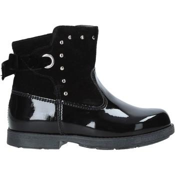 Schoenen Kinderen Laarzen Nero Giardini A921275F Zwart