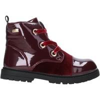 Schoenen Kinderen Laarzen Miss Sixty W19-SMS619 Rood