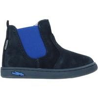 Schoenen Kinderen Laarzen Primigi 4404200 Blauw