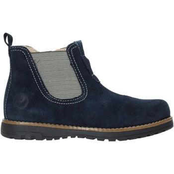 Schoenen Kinderen Laarzen Primigi 4411000 Blauw
