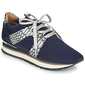 Schoenen Dames Lage sneakers Adige XAN V4 KOI SILVER Blauw