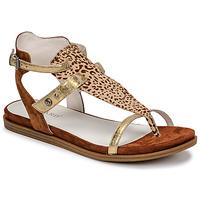 Schoenen Dames Sandalen / Open schoenen Regard BAZUR2 Bruin