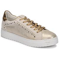 Schoenen Dames Lage sneakers Regard HAVRES Goud
