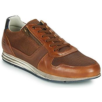 Schoenen Heren Lage sneakers Bullboxer 477K26343FKNCG Bruin