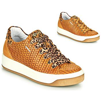 Schoenen Dames Lage sneakers IgI&CO SHOUHAI Oker