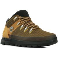 Schoenen Heren Wandelschoenen Timberland Sprint Trekker WP Mid Boot Bruin