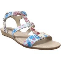 Schoenen Dames Sandalen / Open schoenen Pikolinos 816-PR0751 Blauw / roze