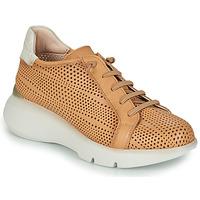 Schoenen Dames Lage sneakers Hispanitas TELMA Camel / Beige