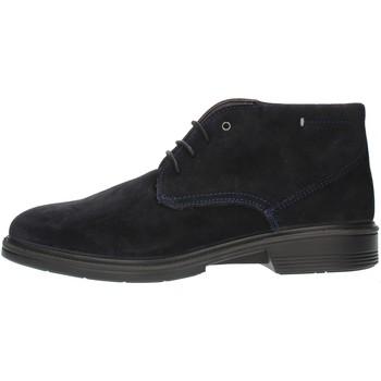 Schoenen Heren Derby Luisetti 30208SE Blue