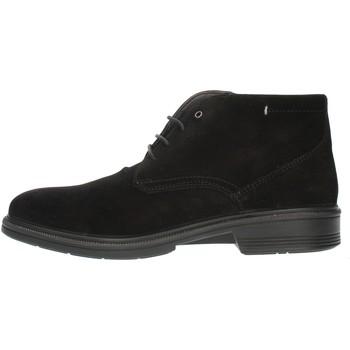 Schoenen Heren Derby Luisetti 30208SE Black