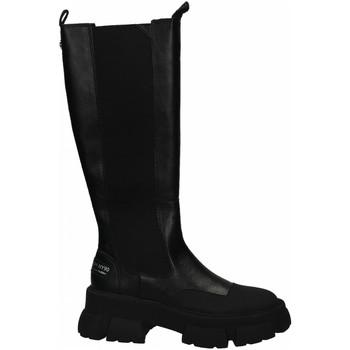 Schoenen Dames Hoge laarzen Steve Madden TRUCKER black
