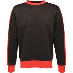 Textiel Heren Sweaters / Sweatshirts Regatta  Zwart/Klassiek Rood
