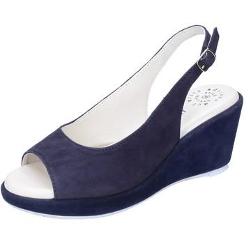 Schoenen Dames Sandalen / Open schoenen Adriana Del Nista Sandali Camoscio Blu