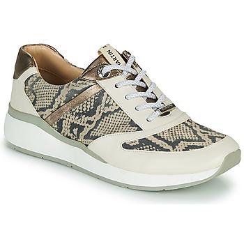 Schoenen Dames Hoge sneakers JB Martin 1KALIO Beige