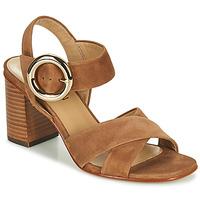Schoenen Meisjes Sandalen / Open schoenen JB Martin 1NICKY Bruin