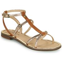 Schoenen Dames Sandalen / Open schoenen JB Martin 1GRIOTTES Bruin